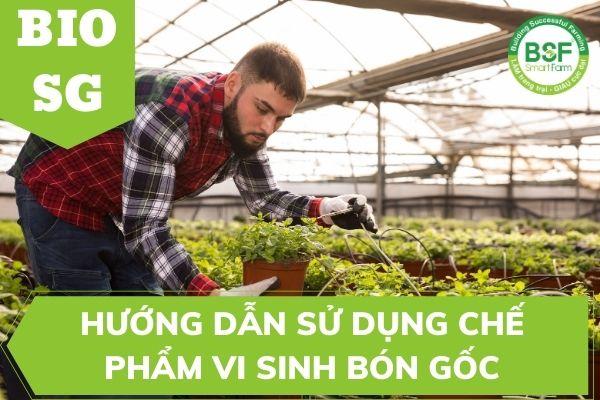 Hướng Dẫn Sử Dụng hữu cơ vi sinh bón gốc BIO SG